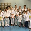 Judo sikerek Pápa